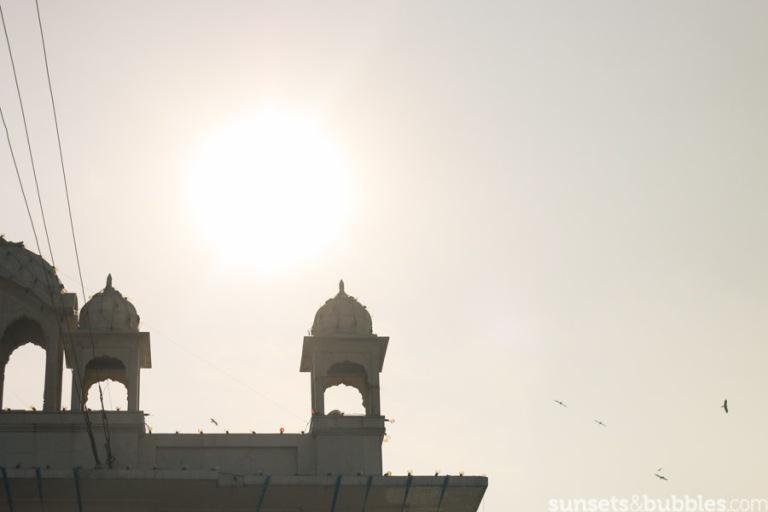 instagram-specialist-photographer-travelphotography-india-delhi-temple-sunset