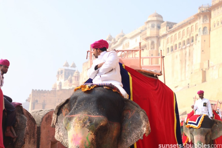 instagram-specialist-photographer-travelphotography-india-jaipur-temple-elephants